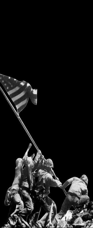 Mobile Slider | Branding - Veterans Day (320x780px)